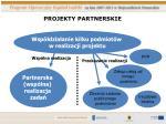 projekty partnerskie