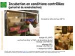 incubation en conditions contr l es potentiel de min ralisation