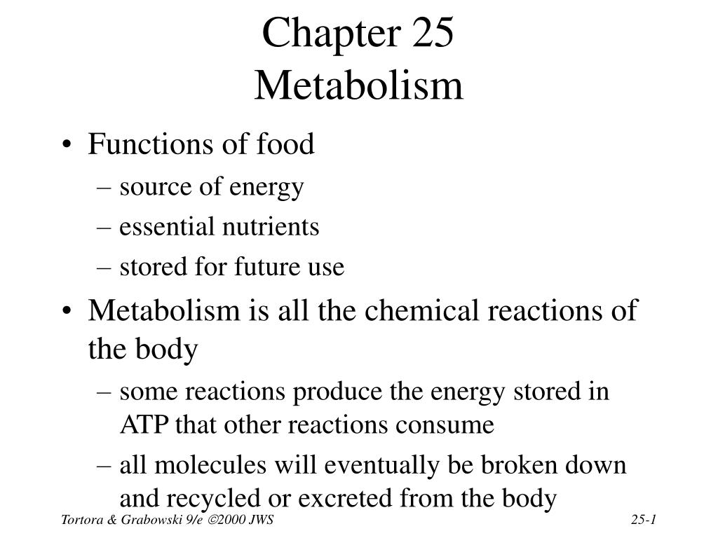 chapter 25 metabolism l.