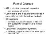 fate of glucose