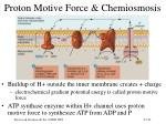 proton motive force chemiosmosis