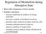 regulation of metabolism during absorptive state