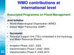 wmo contributions at international level associated programme on flood management