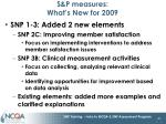 s p measures what s new for 2009