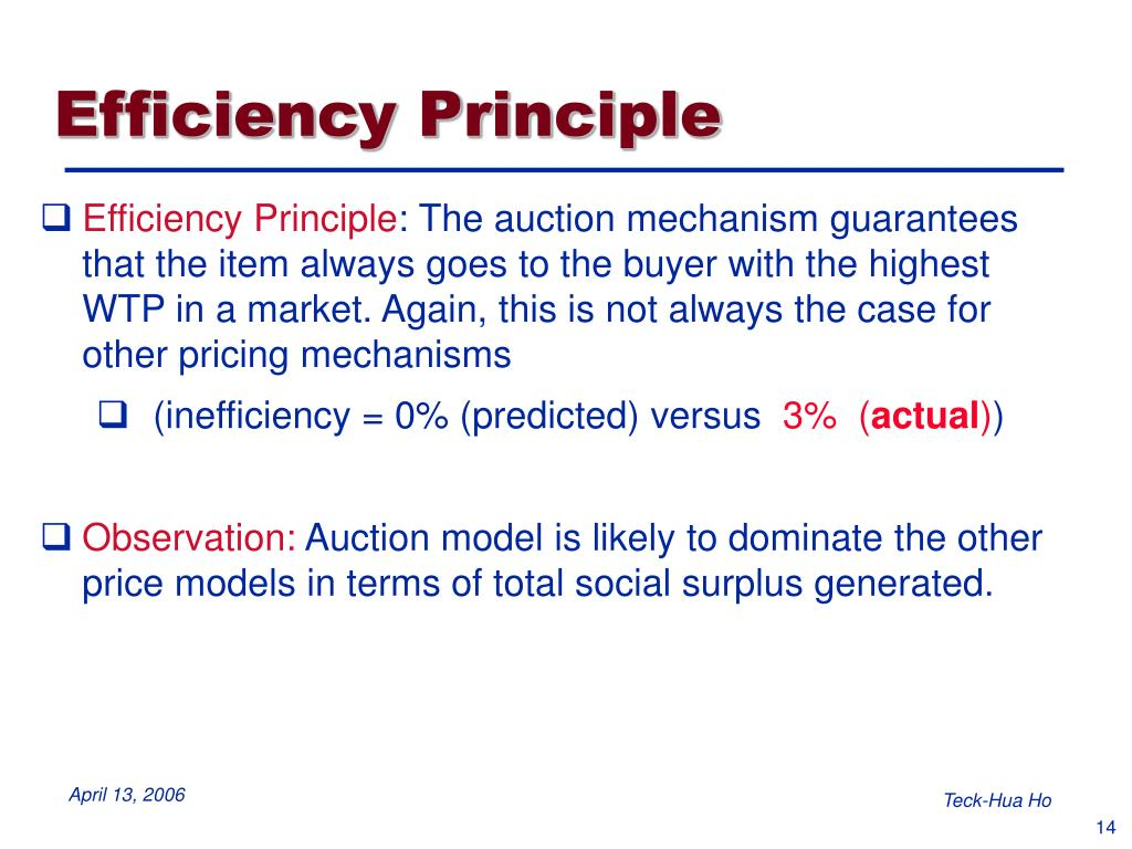 Efficiency Principle
