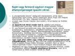 saj t vagy felmen egykori magyar llampolg rs g t igazol okirat