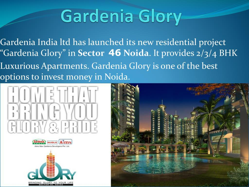 gardenia glory l.