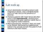 lab work up