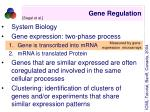 gene regulation