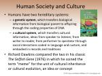 human society and culture