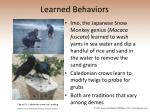 learned behaviors26