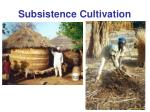 subsistence cultivation21