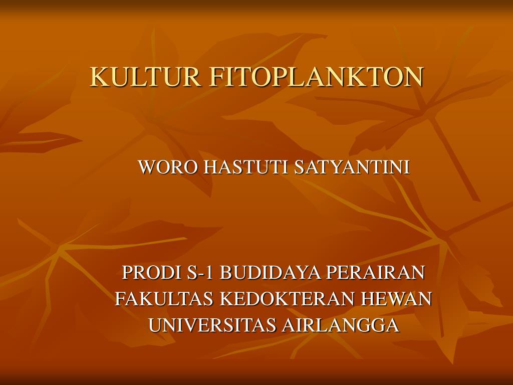 kultur fitoplankton l.