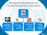im impacts mental interval timing structures of the brain