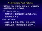 vestibular and neck reflexes