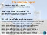 the analysis report