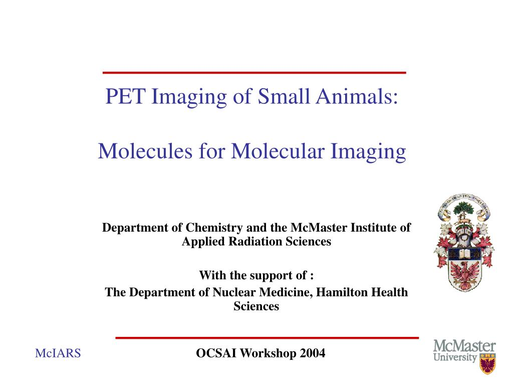 pet imaging of small animals molecules for molecular imaging l.