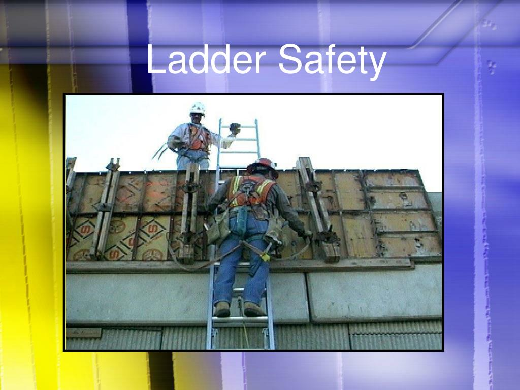 ladder safety l.