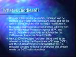 what is biodiesel62