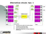alternativas vinculo tipo 1