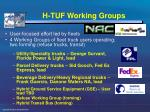h tuf working groups