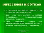 infecciones mic ticas66