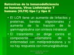 retrovirus de la inmunodeficiencia no humana virus linfotr pico t humano vlth tipo i y tipo ii61