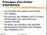 principes d un fichier statistica