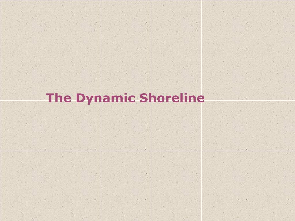 the dynamic shoreline l.