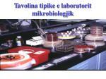 t avolina tipike e laboratorit mikrobiologjik