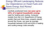 energy efficient landscaping reduces our dependence on fossil fuels and saves energy and money