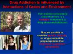 drug addiction is influenced by interactions of genes and environment