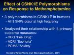 effect of csnk1e polymorphisms on response to methamphetamine