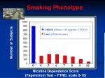 smoking phenotype
