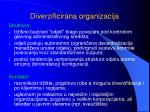 diverzificirana organizacija