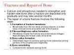 fracture and repair of bone57