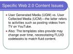 specific web 2 0 content issues