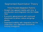 segmented assimilation theory4