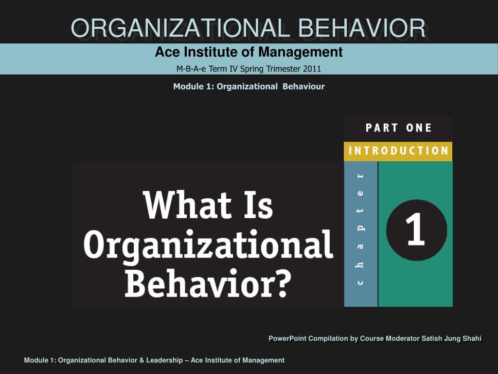 organizational behavior l.