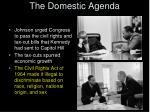 the domestic agenda