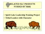 related slc products funded by sbir
