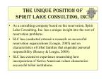 the unique position of spirit lake consulting inc