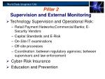 pillar 2 supervision and external monitoring