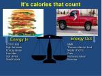 it s calories that count