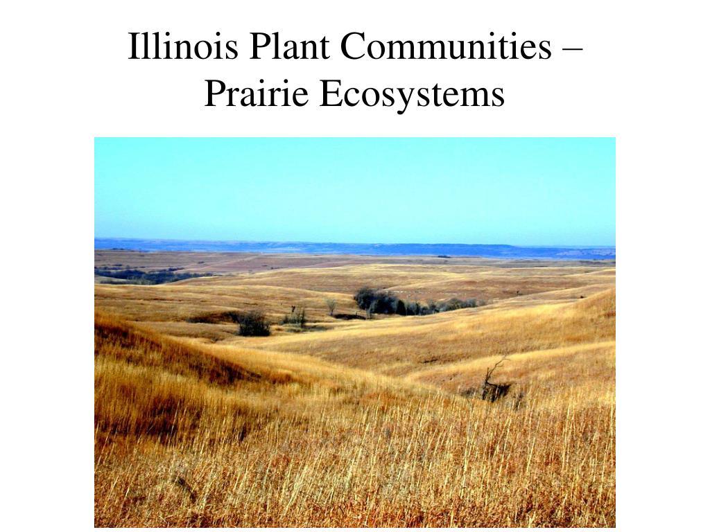 illinois plant communities prairie ecosystems l.