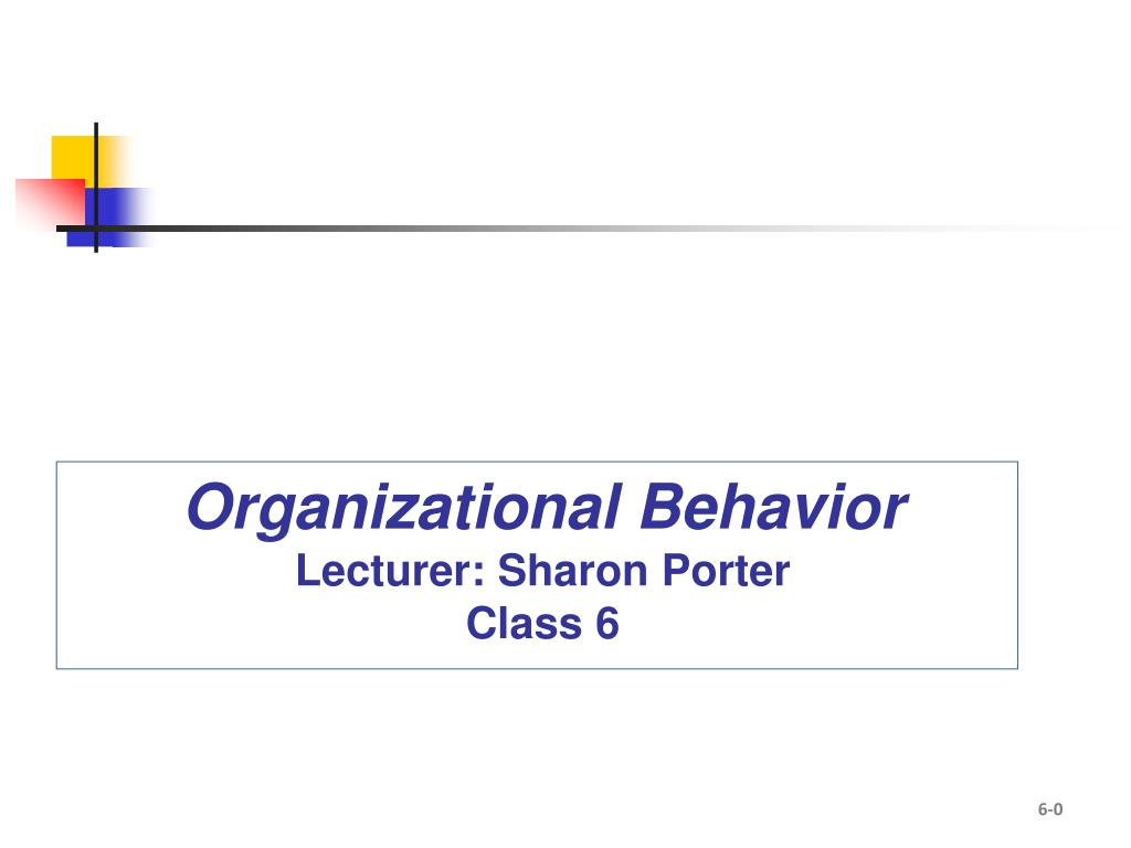 organizational behavior lecturer sharon porter class 6 l.