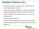 strategic initiatives cont