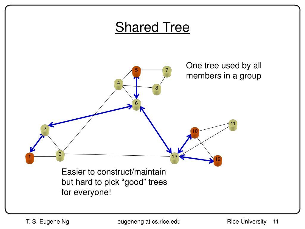 Shared Tree