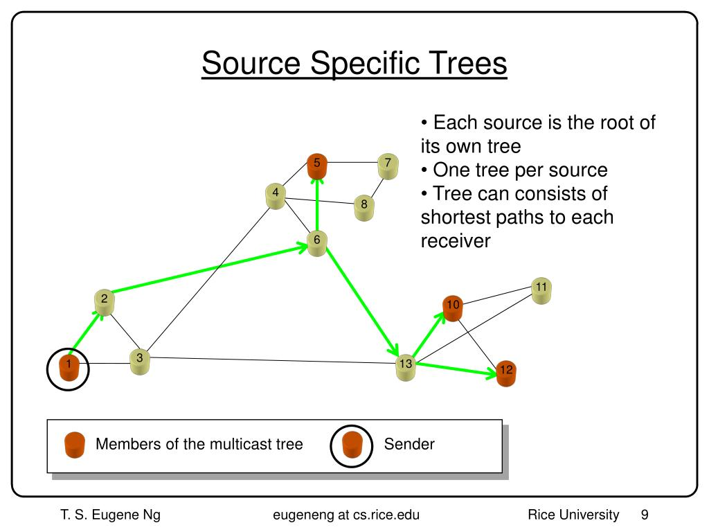 Source Specific Trees