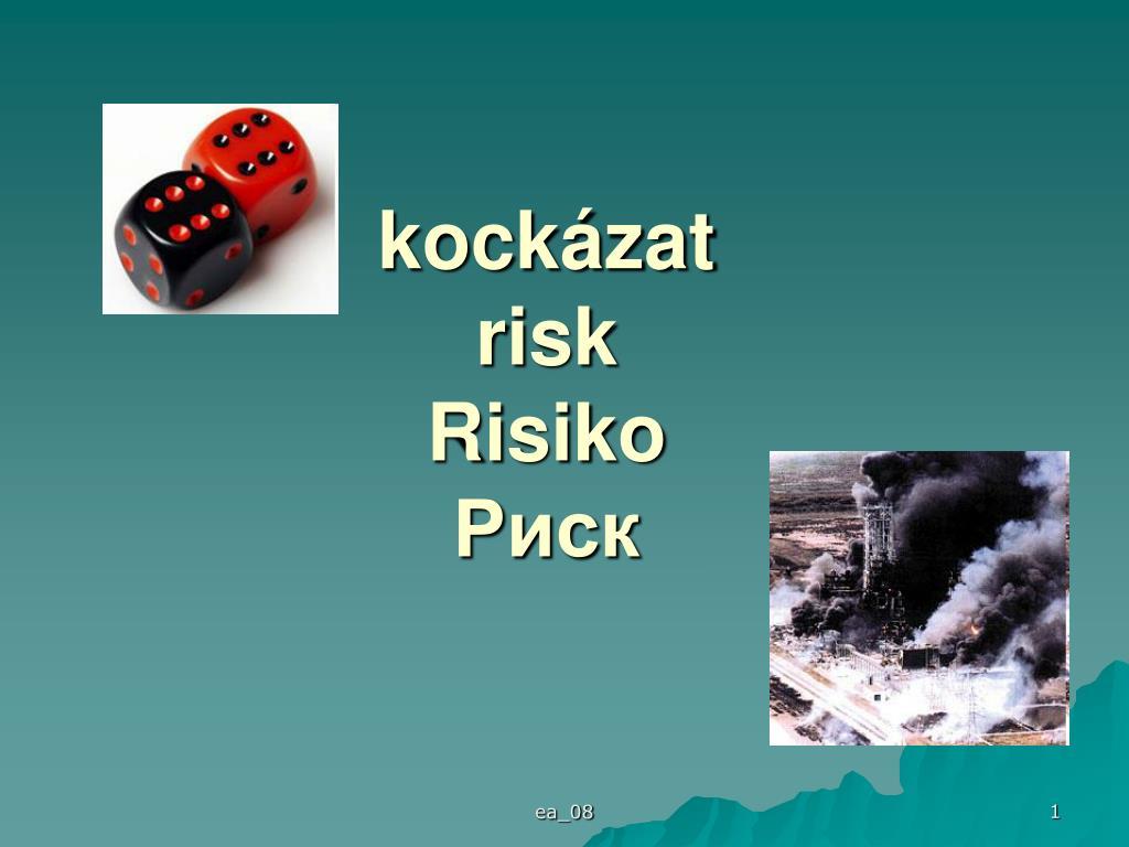 kock zat risk risiko l.
